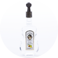Violin Bottle Fruit-Brandy 38% vol. 0,1 l