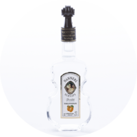 Violin Bottle Apricot Brandy 38% vol. 0,1 l