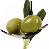 Pure olive oil coldly pressed Greece