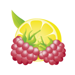 Alpendrink Basic 1:6 Rhaspberry-Lemon